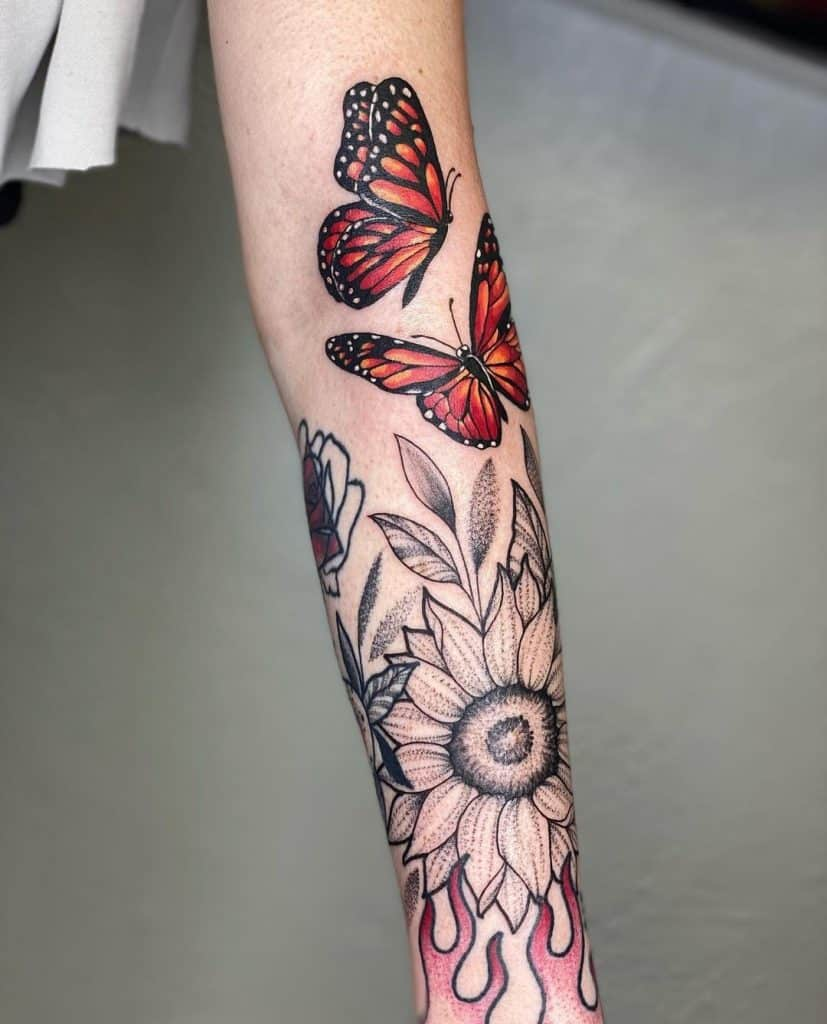 Butterfly and black sunflower